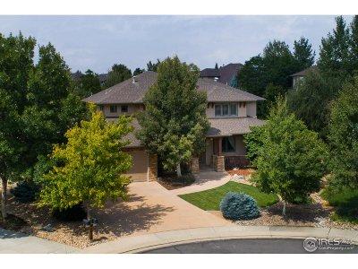 Broomfield Single Family Home For Sale: 14165 Dorado Ct