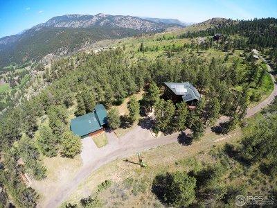 Loveland Single Family Home For Sale: 451 Newell Dr