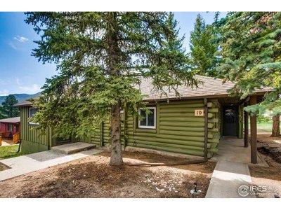 Estes Park Single Family Home For Sale: 1250 S Saint Vrain Ave #10