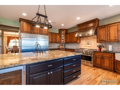 Weld County Single Family Home For Sale: 752 Highway 52