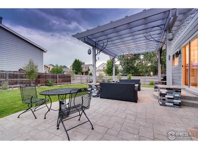 Firestone Single Family Home For Sale: 11275 Dover St