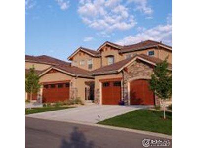 Superior Condo/Townhouse For Sale: 2965 Tierra Ridge Ct