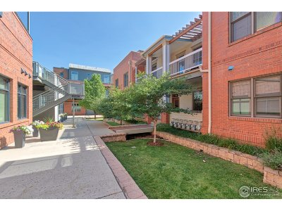 Boulder Condo/Townhouse For Sale: 2320 Spruce St