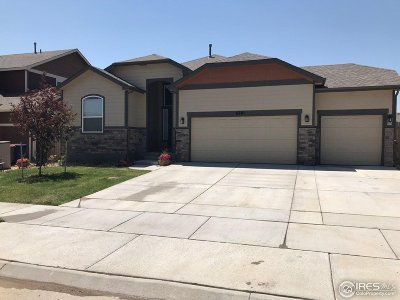 Frederick Single Family Home For Sale: 6801 Sequoia St