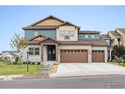Loveland Single Family Home For Sale: 4310 Lyric Falls Dr