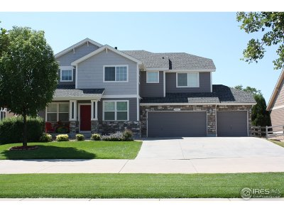 Single Family Home For Sale: 2821 William Neal Pkwy