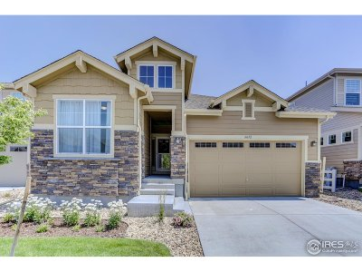 Broomfield Single Family Home For Sale: 16652 Compass Way