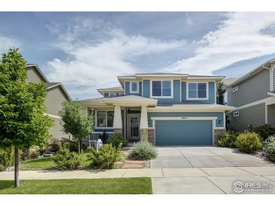 Single Family Home For Sale: 3645 Voyager Ln
