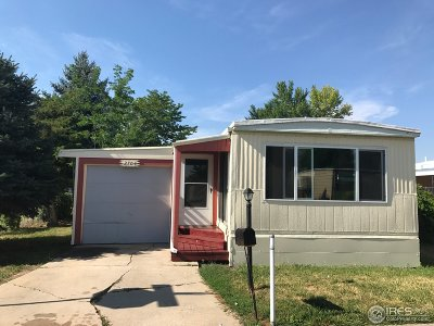 Single Family Home For Sale: 2704 Mallow Pl