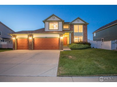 Single Family Home For Sale: 102 Whitney Ct