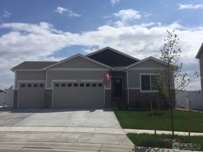 Berthoud Single Family Home For Sale: 2452 Barela Dr