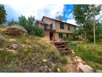 Estes Park Single Family Home For Sale: 363 Ute Ln