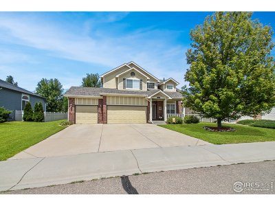 Weld County Single Family Home For Sale: 6369 Sage Ave