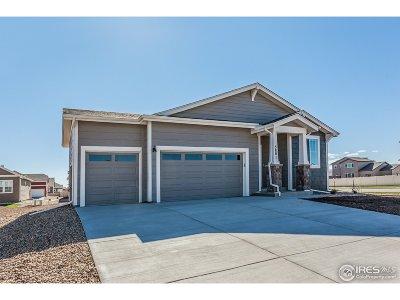 Wellington Single Family Home For Sale: 3801 River Birch St