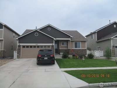 Berthoud Single Family Home For Sale: 747 13th St