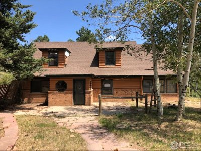 Nederland Single Family Home For Sale: 7089 Magnolia Dr