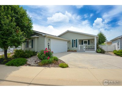 Fort Collins Single Family Home For Sale: 641 Brandt Cir