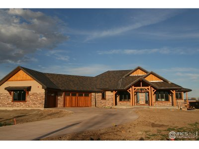 Longmont Single Family Home For Sale: 8818 Portico Ln