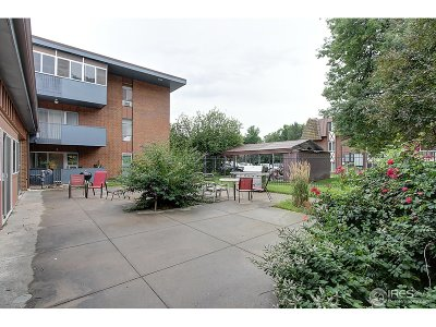 Fort Collins Condo/Townhouse For Sale: 620 Mathews St #110