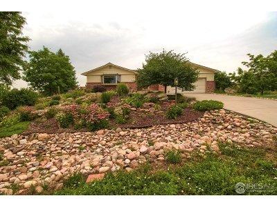 Broomfield Single Family Home For Sale: 14650 Benton St