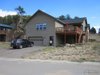 Estes Park Single Family Home For Sale: 1926 Silver Tree Ln