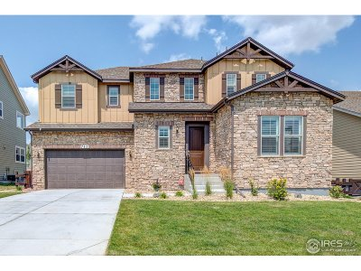 Erie Single Family Home For Sale: 765 Grenville Cir