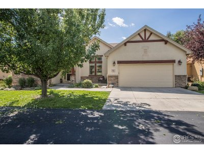 Greeley Single Family Home For Sale: 6920 Poudre River Rd #10
