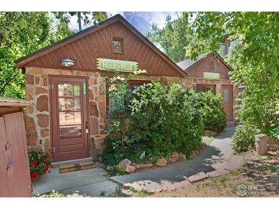 Eldorado Springs Single Family Home For Sale: 163 Artesian Dr