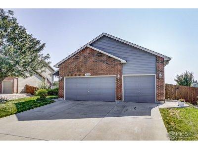Firestone Single Family Home For Sale: 10620 Echo St