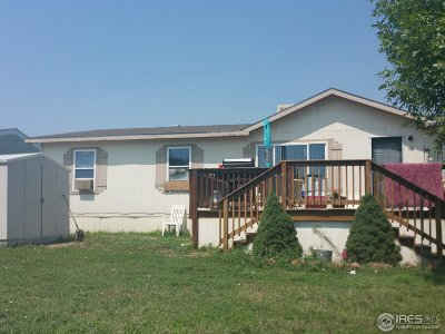 Greeley Single Family Home For Sale: 435 N 35th Ave #408