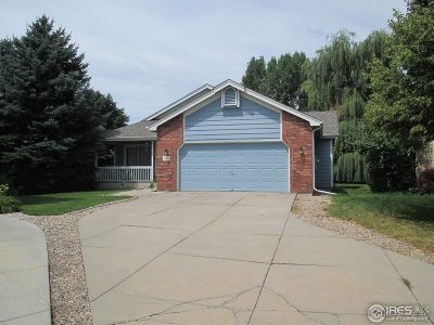 Fort Collins Single Family Home For Sale: 5213 Trappers Creek Ct