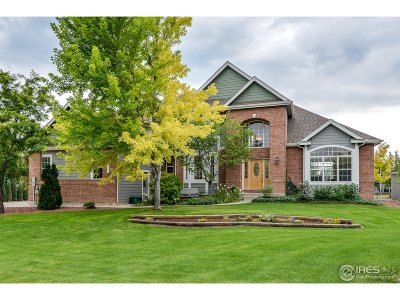 Loveland Single Family Home For Sale: 5004 Single Tree Dr