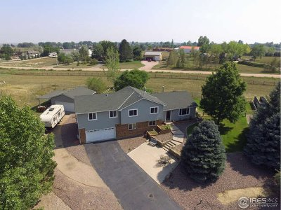 Berthoud Single Family Home For Sale: 612 Evita Ct