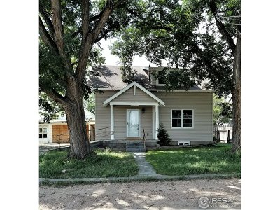 Single Family Home For Sale: 817 N 7th Ave