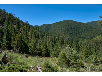 Lyons Residential Lots & Land For Sale: Spruce (Parcels A, B & E) Dr