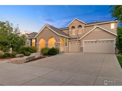 Erie Single Family Home For Sale: 2871 Eagle Cir