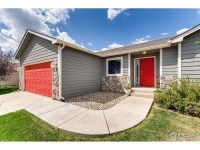 Wellington Single Family Home For Sale: 7195 Mount Nimbus St