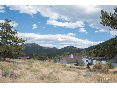 Estes Park CO Single Family Home For Sale: $636,100