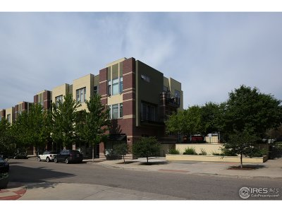 Boulder Condo/Townhouse For Sale: 4555 13th St #A