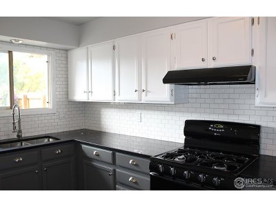 Fort Collins Condo/Townhouse For Sale: 309 Butch Cassidy Dr