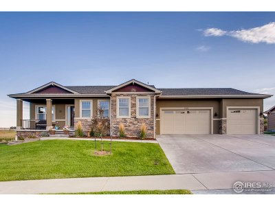 Greeley Single Family Home For Sale: 8106 Skyview St