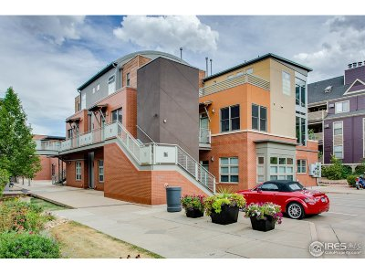 Boulder Condo/Townhouse For Sale: 2336 Spruce St #F
