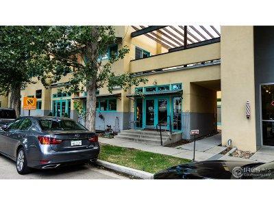 Longmont Condo/Townhouse For Sale: 734 Tenacity Dr #B