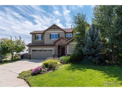 Erie Single Family Home For Sale: 1278 Graham Cir
