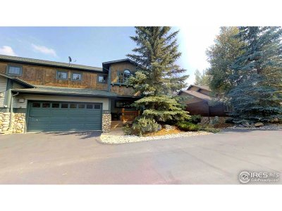 Estes Park Condo/Townhouse For Sale: 514 Riverrock Cir