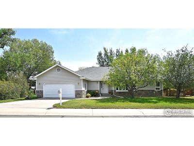 Single Family Home For Sale: 2221 Stonecrest Dr
