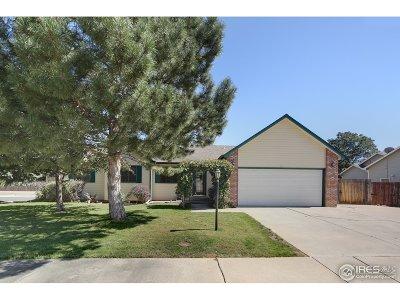 Loveland Single Family Home For Sale: 526 Christine Ct