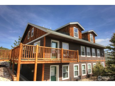 Estes Park Condo/Townhouse For Sale: 2625 Marys Lake Rd #C
