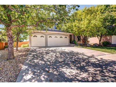 Broadlands Single Family Home For Sale: 13825 Dogleg Ln