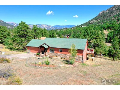Estes Park Single Family Home For Sale: 2730 Wildwood Dr